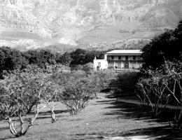 Oranjezicht Estate